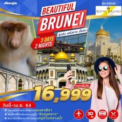 (BN-BI3D2N) BEAUTIFUL BRUNEI 3 DAYS BY BI